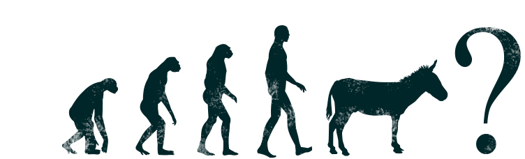 evolution_big