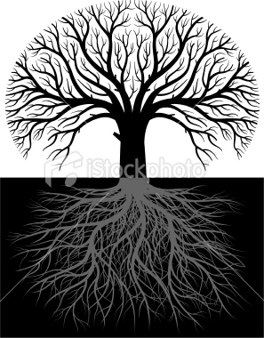 ist2_7008647-large-tree-roots-two
